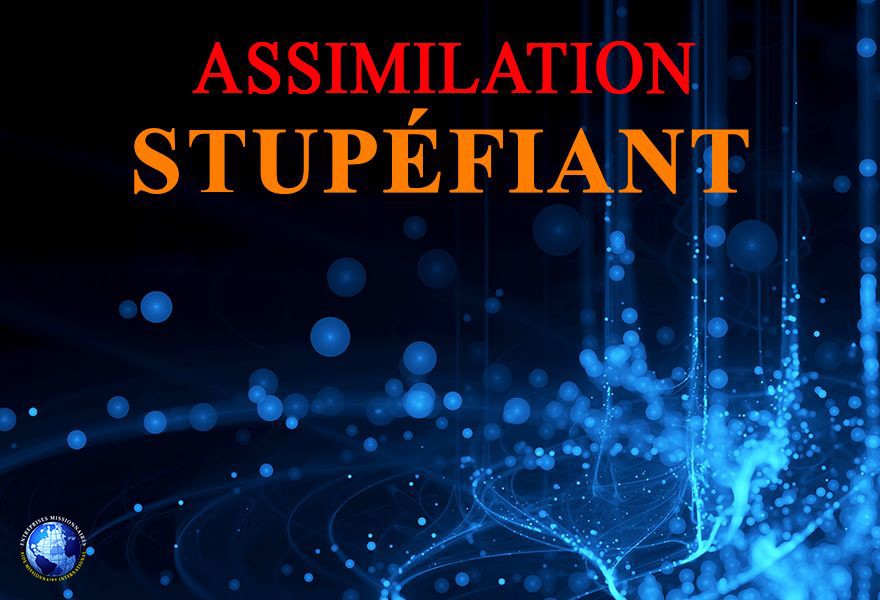 Assimilation Stupéfiant