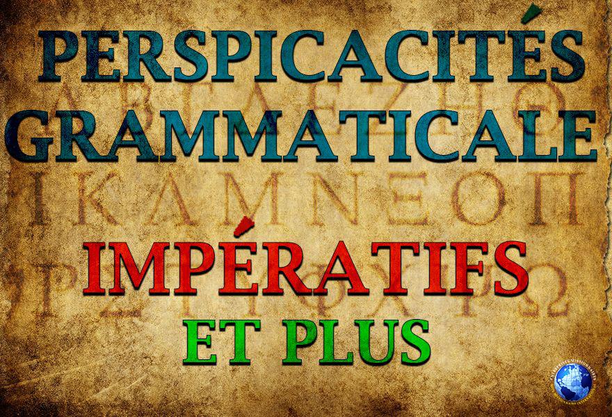 Perspicacités Grammaticale