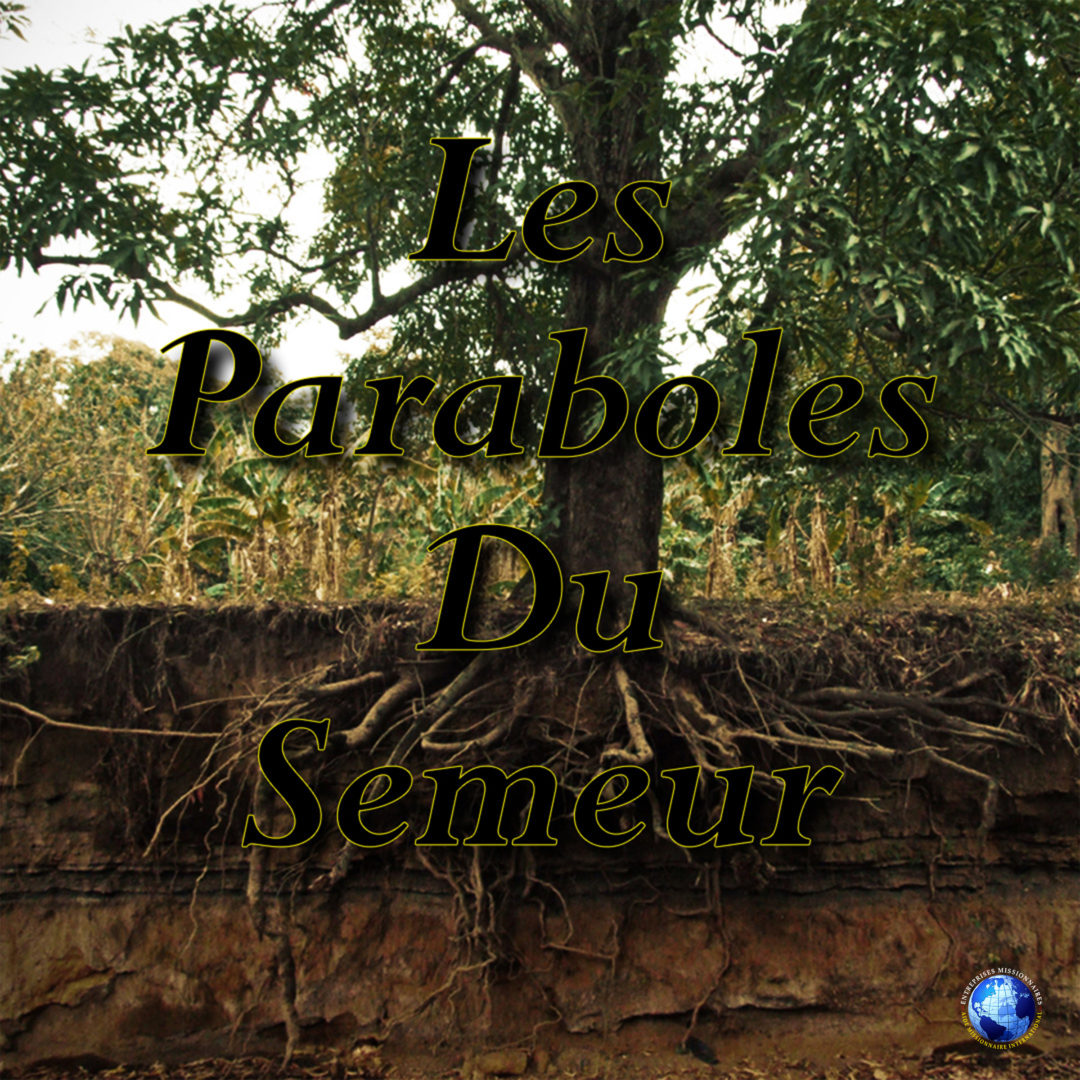 Les Paraboles Du Semeur