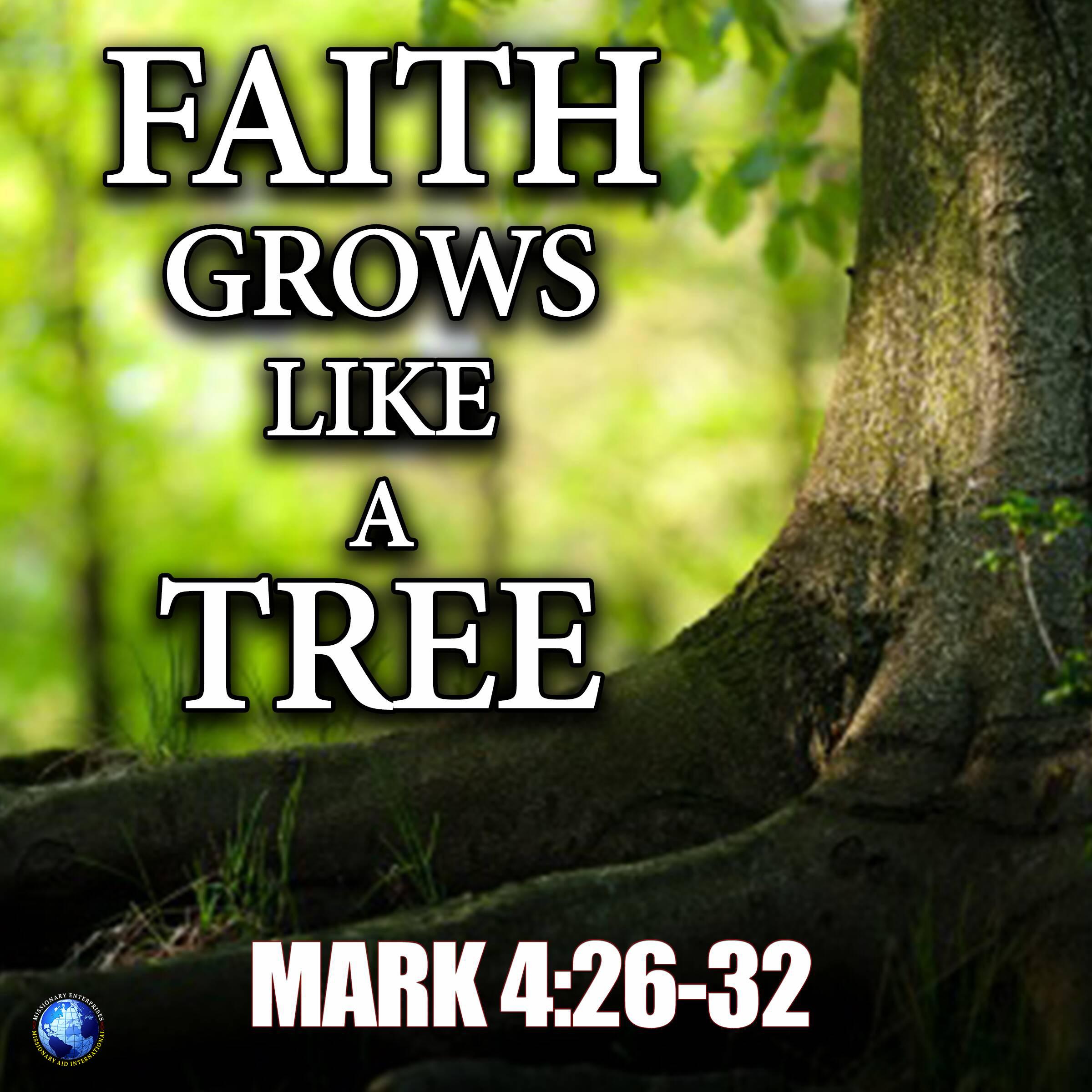 Faith Grows Like A Tree