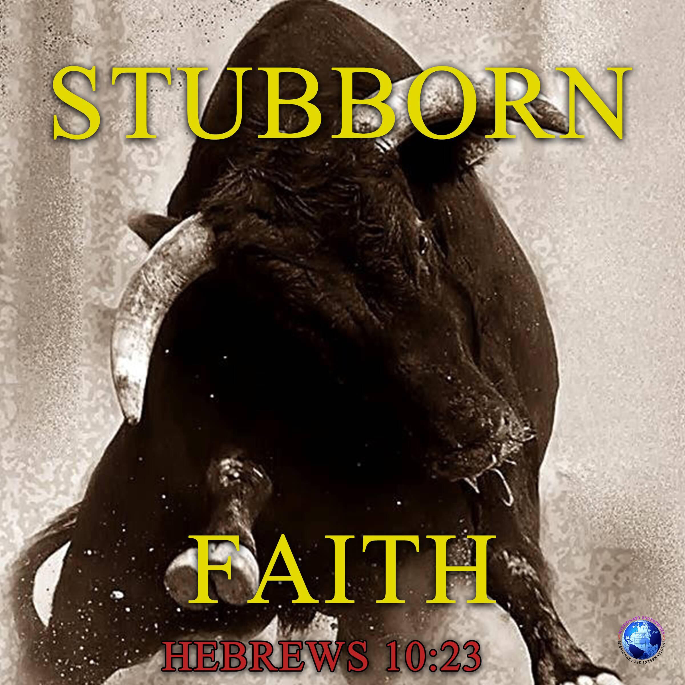 Stubborn Faith